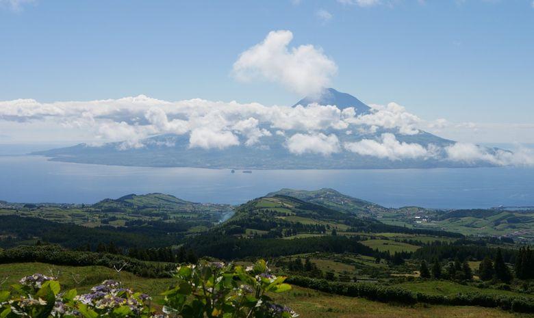Voile-rando & cétacés aux Açores-6