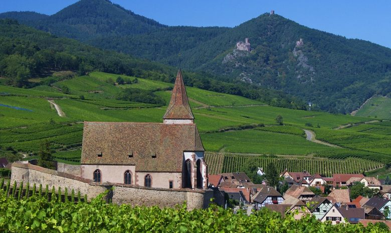 Séjour dégustation au coeur de l'Alsace en Liberté-5