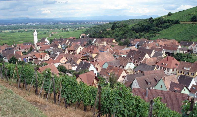 Séjour dégustation au coeur de l'Alsace en Liberté-6