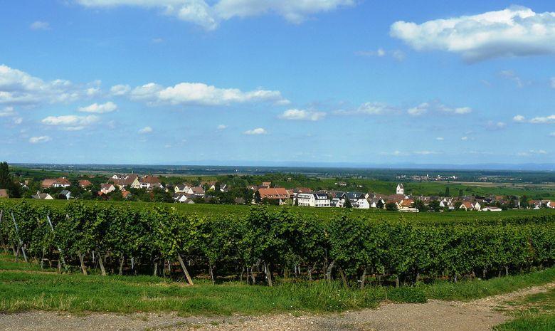 Séjour dégustation au coeur de l'Alsace en Liberté-8
