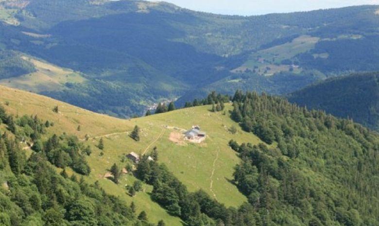 Alsace, coeur de vignoble ! 5jours/4nuits-6