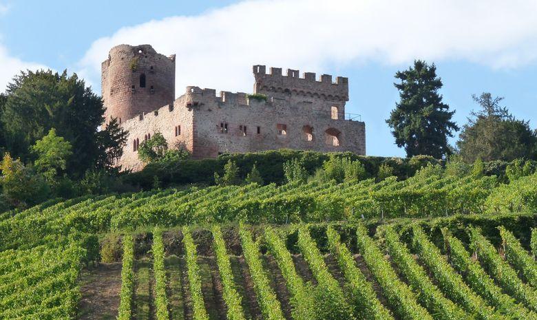 Séjour gastronomique au cœur de l'Alsace en hôtel-2