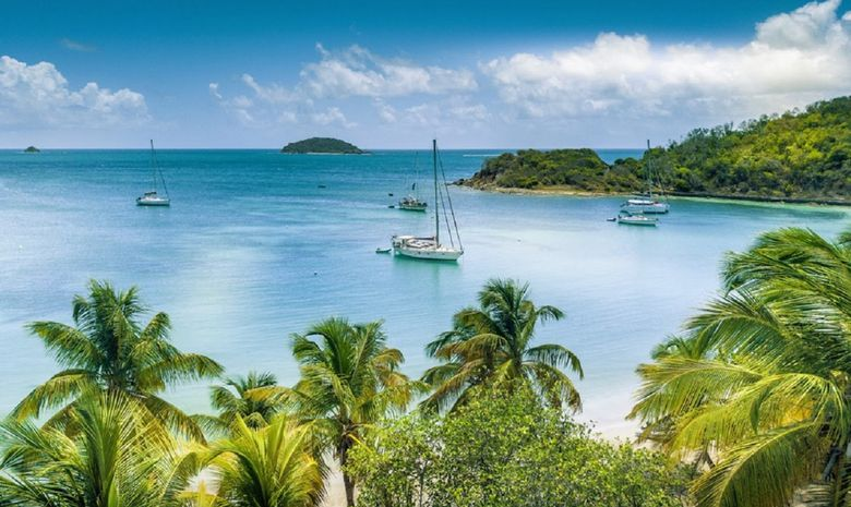 Croisière voilier aux Grenadines
