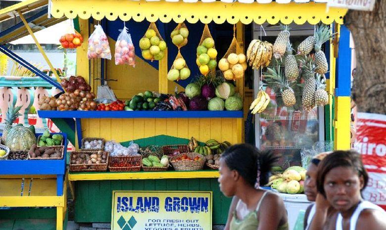 Grenadines-10