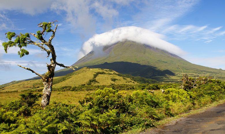 Croisières Açores & traversée vers la Bretagne Sud-3