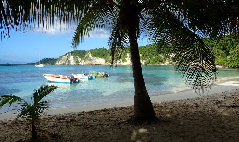 Les trésors des Îles Grenadines en voilier