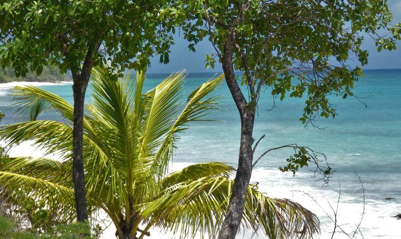 Croisière Guadeloupe : Marie-Galante & Les Saintes-6