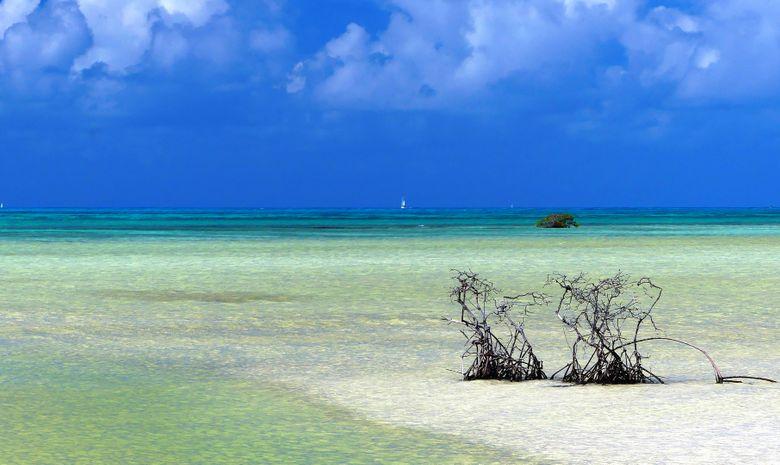 Croisière stage au cœur des Îles Grenadines