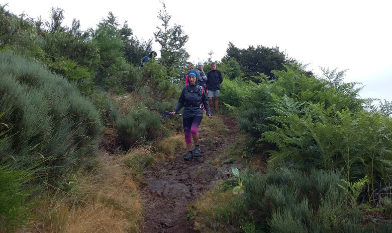Stage initiation trail dans les Monts du Cantal