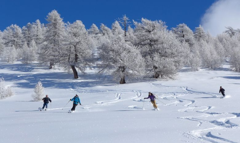 initiation au ski de rando-4