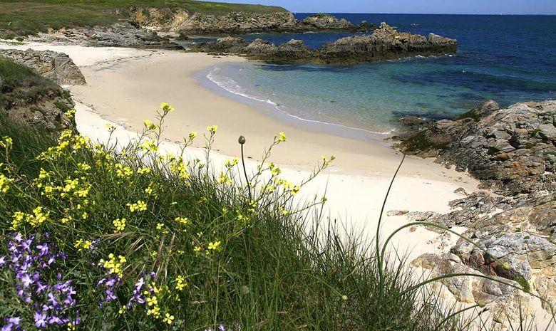 Croisière Semaine du Golfe du Morbihan