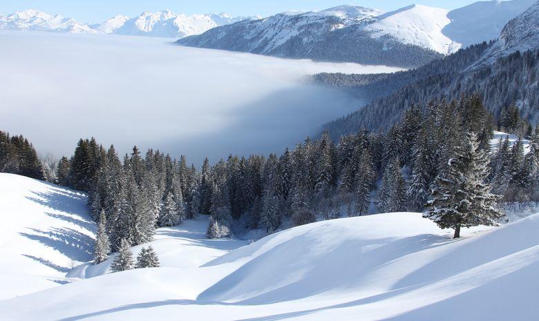 Yoga, Spa et ski de randonnée-4