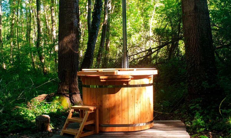 Stage Yoga & Trail en forêt de Fontainebleau