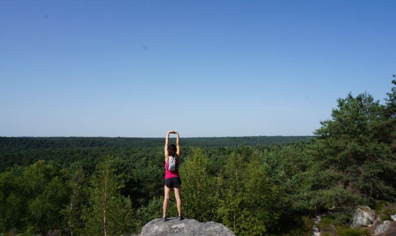Sortie running en forêt de Fontainebleau