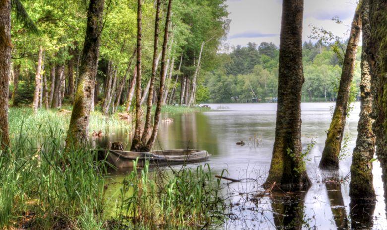 Grand traversée du Morvan en Trail