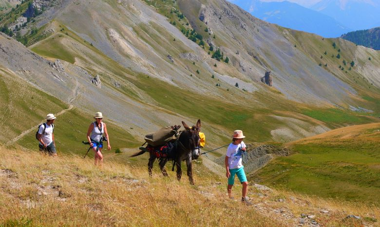 Randonnée en famille à dos d'âne-3