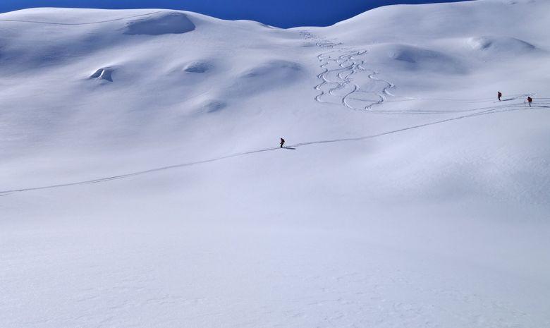 Les Écrins en ski de randonnée-5