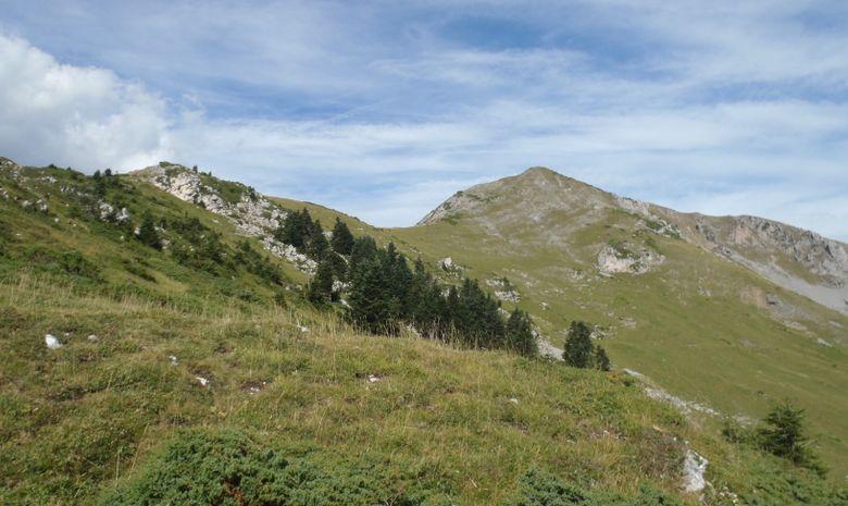 Séjour sauvage entre Esparros et le pic de Bassia -4