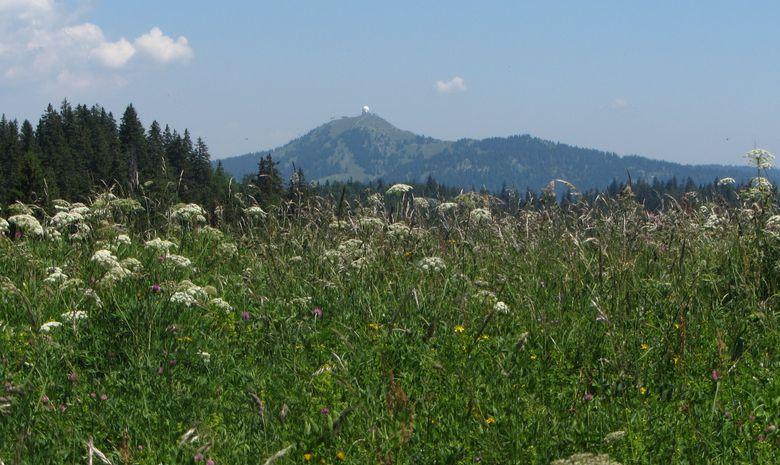 Rando à la journée dans le haut Jura-3