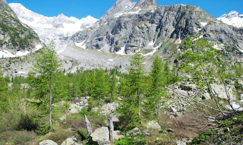 4 jours d'évasion en trail face au Mont-Blanc-4