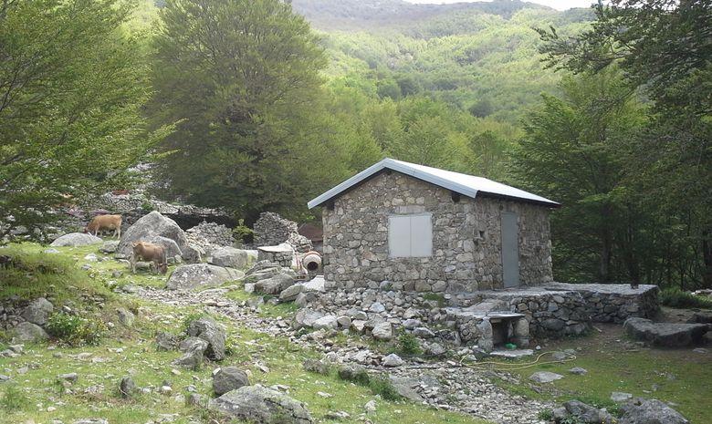 Rando découverte: Flore, montagnes, bergeries... -1
