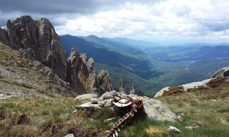 5 jours de trail sauvage et technique en Corse-8