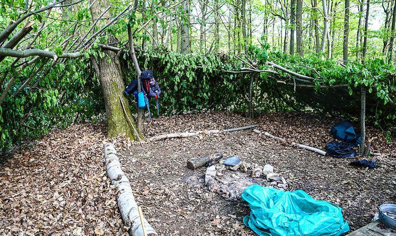 Stage de survie en milieu naturel forestier-2