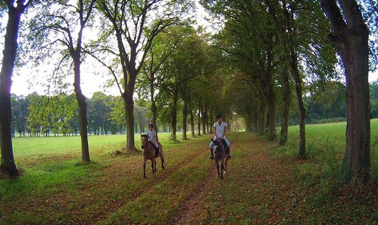 Balade à cheval dans le Parc de Versailles-9