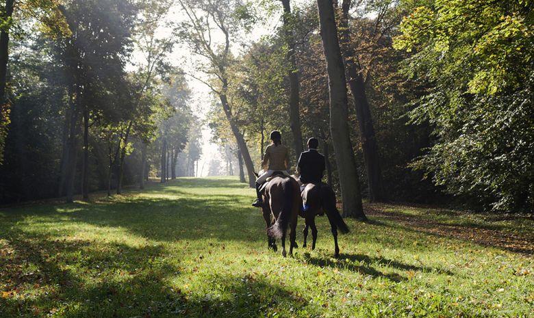 Balade à cheval dans le Parc de Saint-Cloud-2
