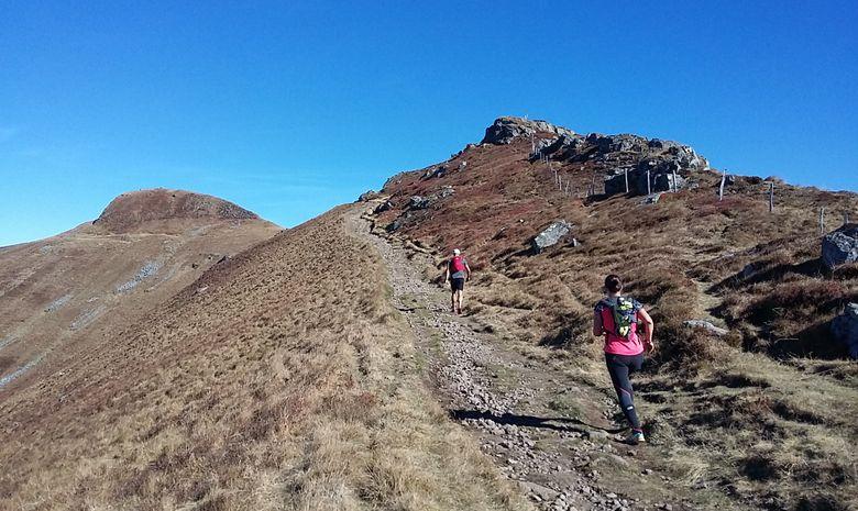 4j initiation au trail dans les Monts du Cantal-8