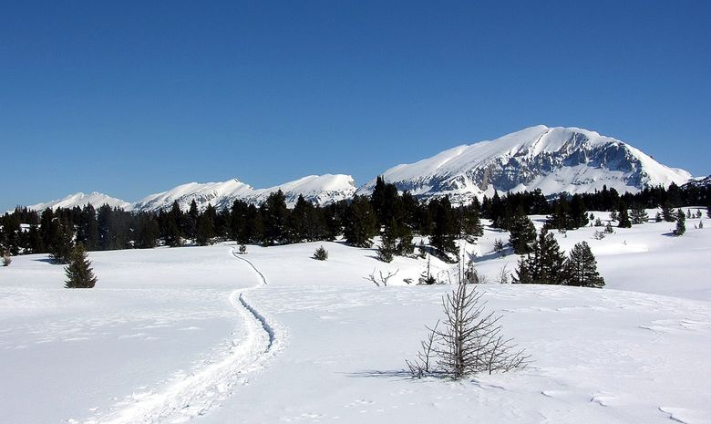 Panorama sur les hauts plateaux du Vercors