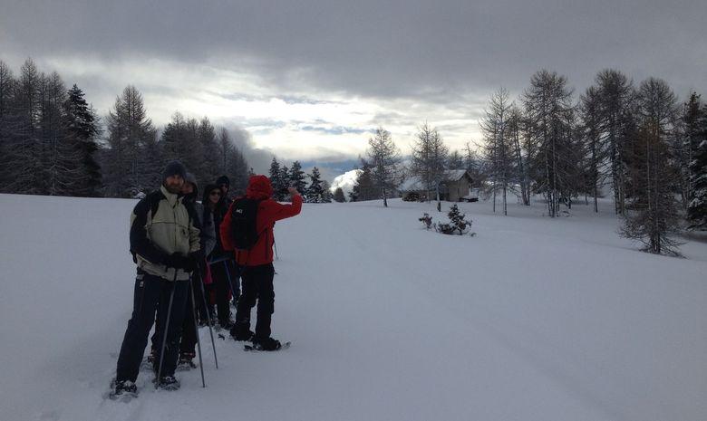 Groupe de randonneurs admirant une forêt enneigée