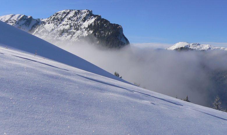 Vaste étendue recouverte de neige