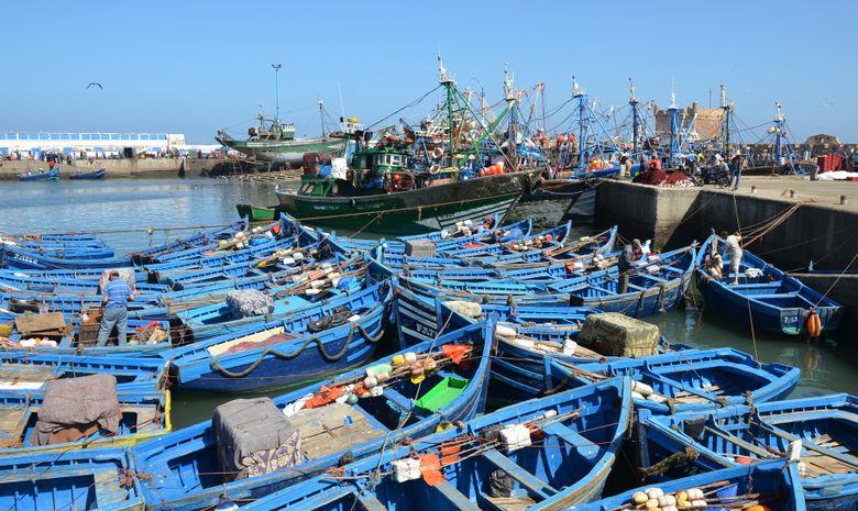 Séjour kitesurf à Essaouira-6