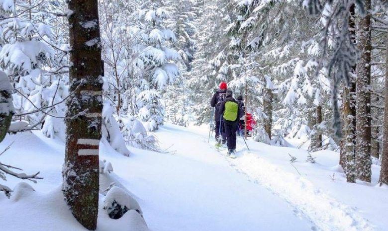 Séjour en raquettes dans le Massif des Vosges-3