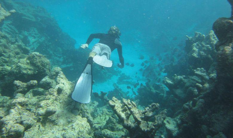 croisière dans les Grenadines-3