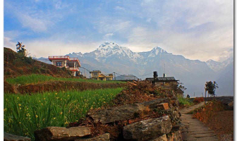 Vue sur le village de Ghandruk