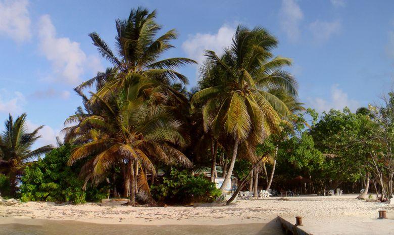 Croisière catamaran au Nord de la Martinique-3