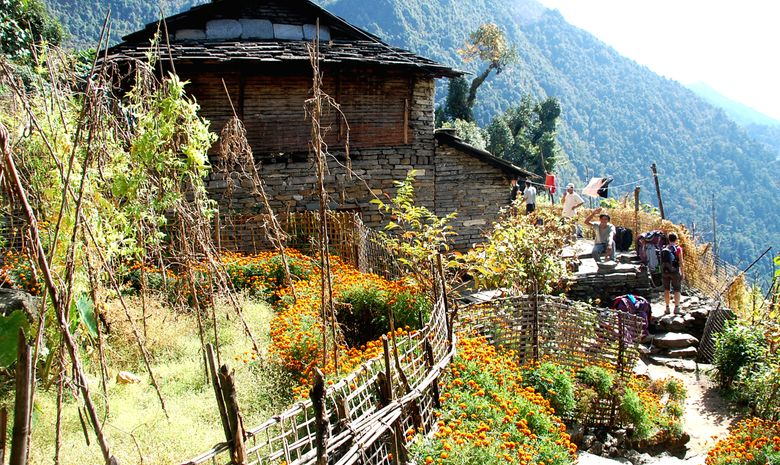 Sanctuaire de l'Annapurna-3