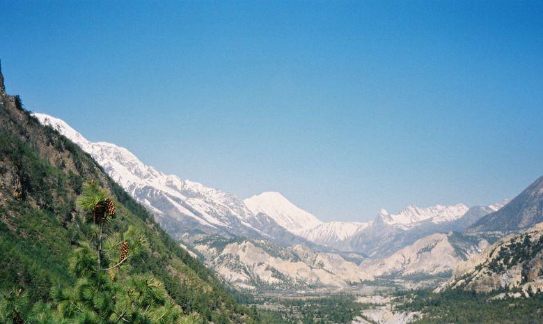 Montagnes himalayennes enneigées