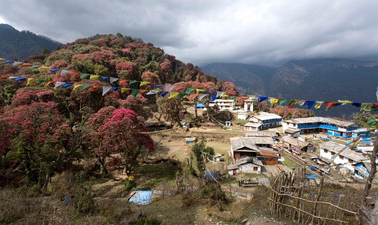 Habitations dans le village népalais de Ghorepani