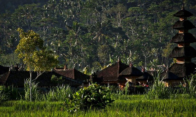 Village traditionnel balinais