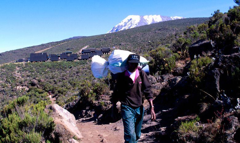 Ascension du Kilimandjaro (5895 m) - Voie Rongai-8