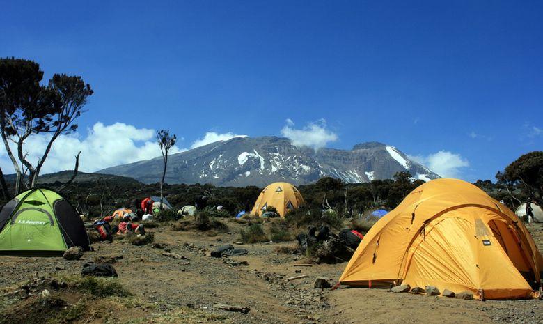 Ascension du Kilimandjaro (5895 m) - Voie Lemosho-7