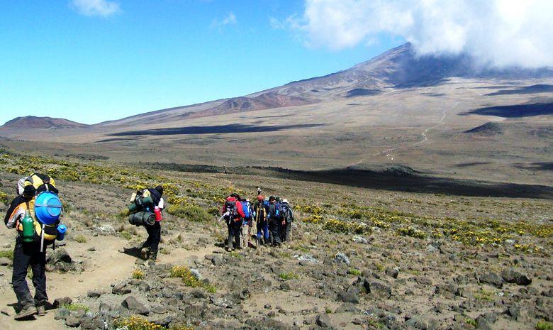 Ascension du Kilimandjaro (5895 m) - Voie Lemosho-2