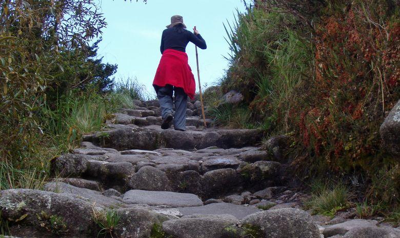 Trek du Chemin de l'Inca-8