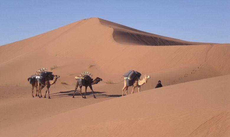 Contreforts du djebel Bani & Dunes de l'erg Mhazil-2
