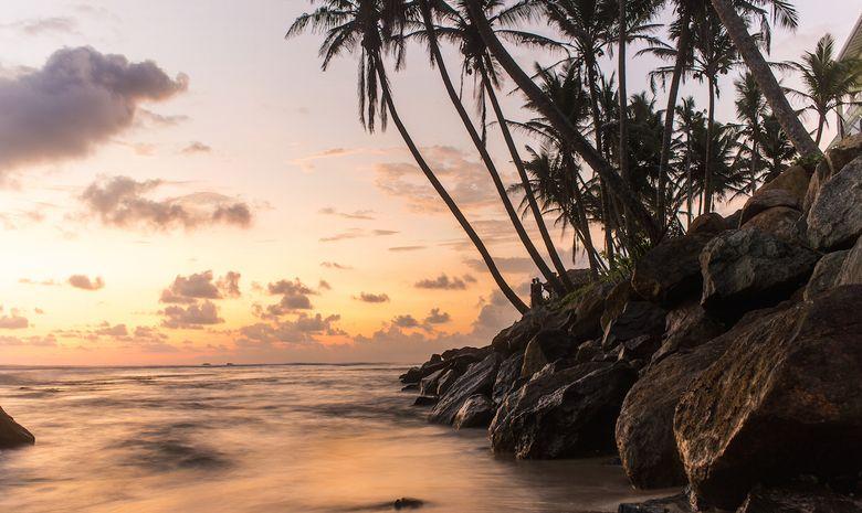 Séjour de surf à Ahangama - Sri Lanka-10