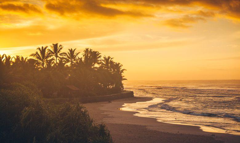 Séjour de surf à Ahangama - Sri Lanka-6