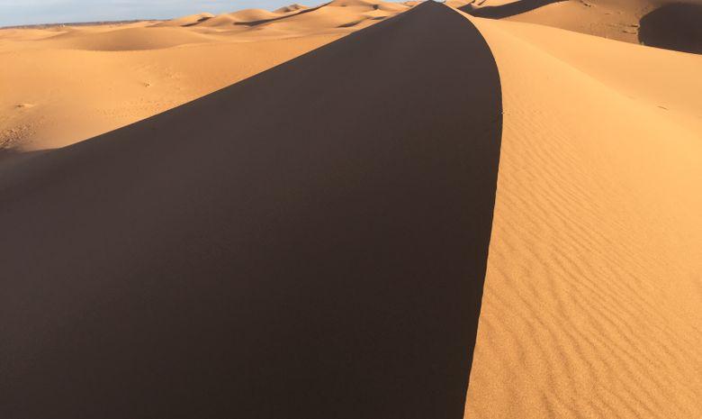 Palmeraie et dunes du Drâa-2